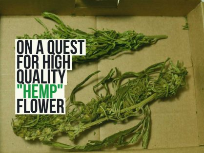 On a quest for high quality hemp flower