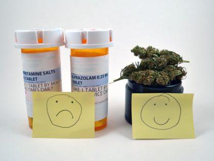 Cannabis vs Xanax and Adderall