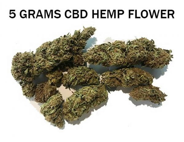 CBD Hemp Direct 5 grams