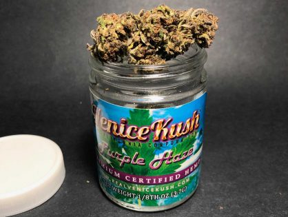 Purple Haze CBD Flower from Venice Circle - mjgeeks