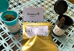 Canna Comforts review of LIfter, Elektra, and Purple Gas