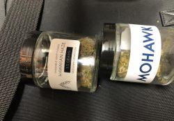 Mohawk Hemp in Glass Jars